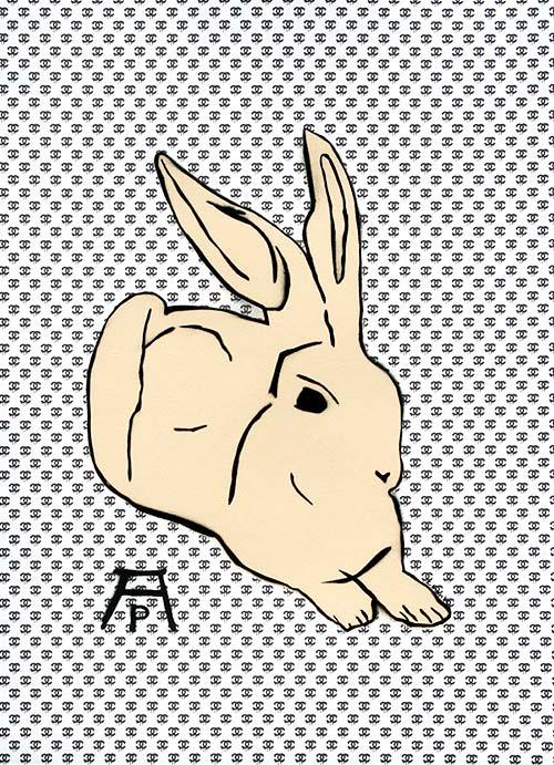 c.mank - Dürer Hase #7 | Dürer Rabbit #7